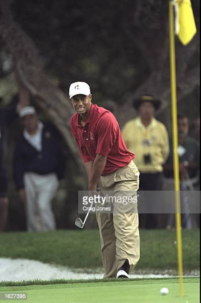 Tiger Woods of the USA plays a chip shot during the opening day foursomes of the Johnnie Walker Ryder Cup at the Valderrama Golf Club in Sotogrande...