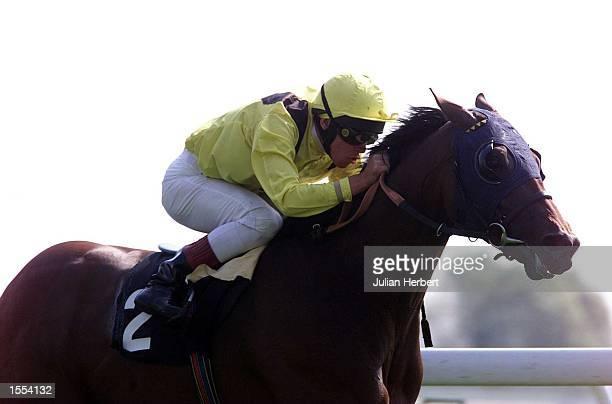 Frankie Dettori brins Algunnaas home to land The Stanley Casinos Rated Stakes run at Haydock Park Mandatory Credit Julian Herbert/ALLSPORT