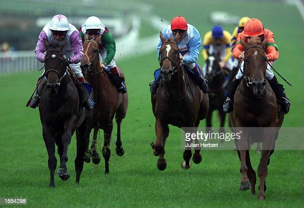 John Reid brings Going Global home to and The St Ivel ''Gold Cup'' Maiden Stakes run over 1 Mile at Goodwood Mandatory Credit Julian Herbert/ALLSPORT