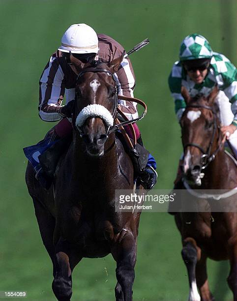Paul Doe brings Shadoof home to land The Vaillant Rated Stakes run over 1 Mile and 2 Furlongs at Epsom Mandatory Credit Julian Herbert/ALLSPORT