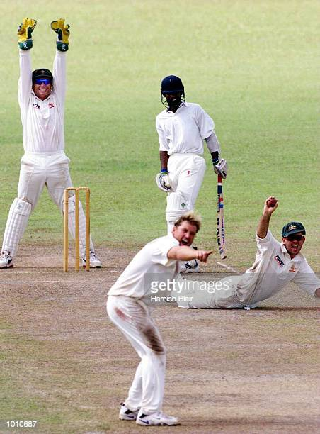 Ricky Ponting of Australia dives for a miraculous catch off Chamara Silva but it was given not out as Shane Warne and Ian Healy also appeal during...