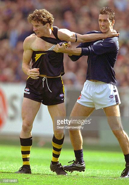 Ben Holland for Richmond andStephen Silvagni for Carlton are involved in an altercation during the AFL Semi Final match between the Richmond Tigers...