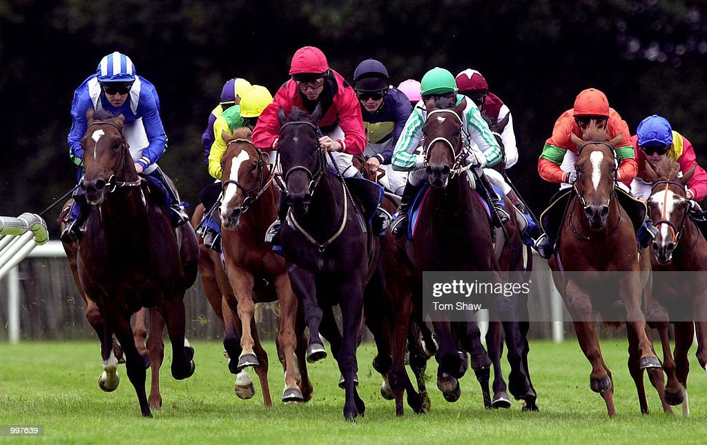 Exploring ridden by John Reid leads the field out of the bend in the 3.15 European Breeders Fund Maiden Stakes at Kempton Races, Kempton Park, London. DIGITAL IMAGE. Mandatory Credit: Tom Shaw/ALLSPORT