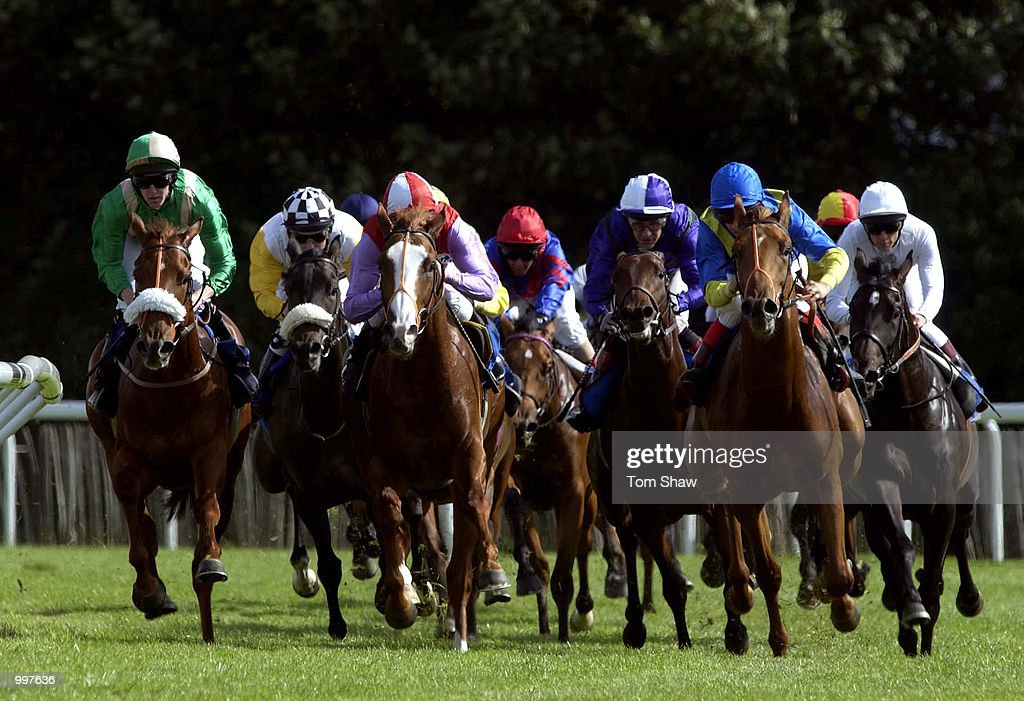 Lee Newman riding Connor (red and white cap) leads the field out of the bend in the 2.40 European Breeders Fund Maiden Stakes at Kempton Races, Kempton Park, London. DIGITAL IMAGE. Mandatory Credit: Tom Shaw/ALLSPORT