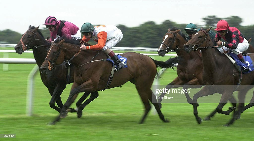 Mamore Gap ridden by Dane O''Neill just leads Queenie ridden by Darryll Holland during the 3.45 Autumn Handicap Stakes at Kempton Races, Kempton Park, London. DIGITAL IMAGE. Mandatory Credit: Tom Shaw/ALLSPORT