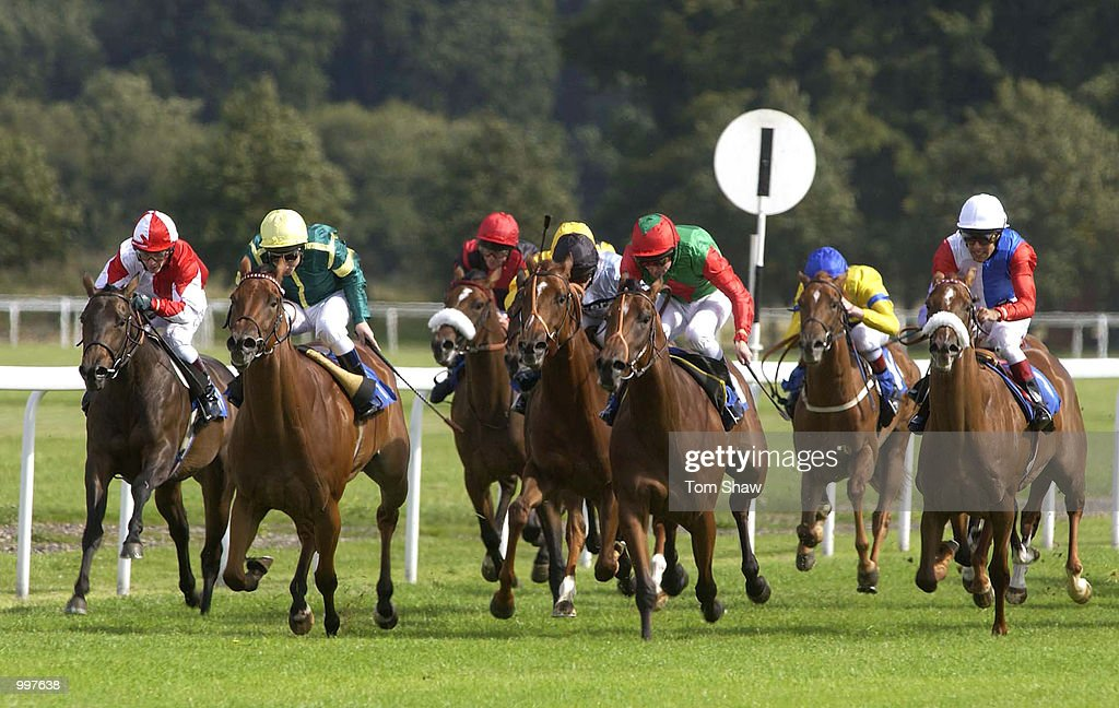 Ringmoor Down ridden by Seb Sanders (Yellow hat and green top) leads the field on the straight in the 2.10 European Breeders Fund Maiden Fillies Stakes at Kempton Races, Kempton Park, London. DIGITAL IMAGE. Mandatory Credit: Tom Shaw/ALLSPORT