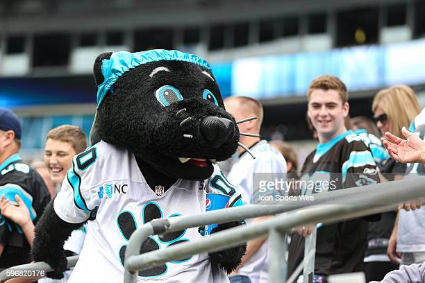 Carolina Panthers mascot Sir Purr during game action between the Detroit Lions and the Carolina Panthers at Bank of America Stadium in Charlotte, NC....