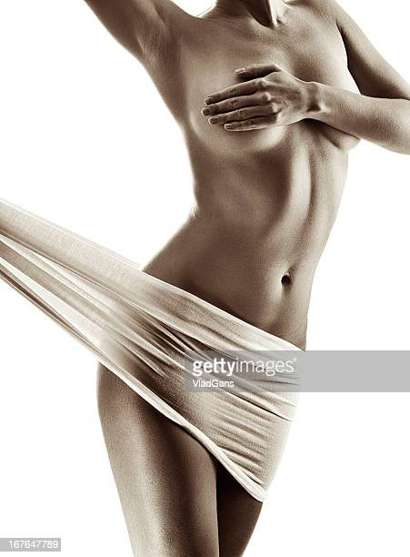 Sepia toned nude female torso on white background