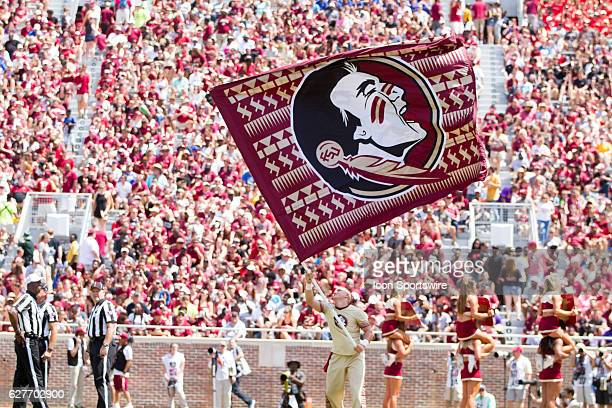 Florida State cheerleader waving the Florida State flag after scoring a touchdown during the game between the Florida State Seminoles and the...