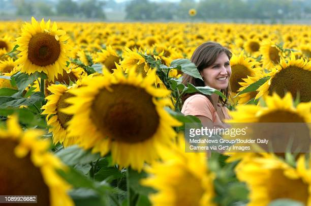 September 11 2006/ Longmont/ Allie Encarnacion of Fullerton Ca poses for a photo in the middle of a Sunflower field in Longmont September 11 2006