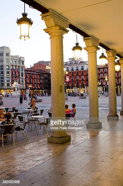 Features of Valladolid historic city and municipality in northcentral Spain situated at the confluence of the Pisuerga and Esgueva rivers View of the...