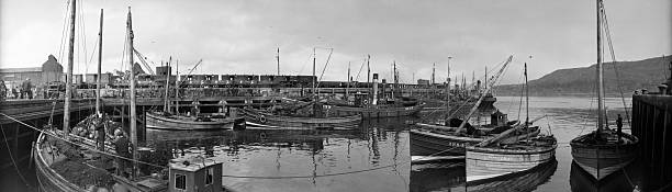 Fishing boats in the harbour at Mallaig. Mallaig is...