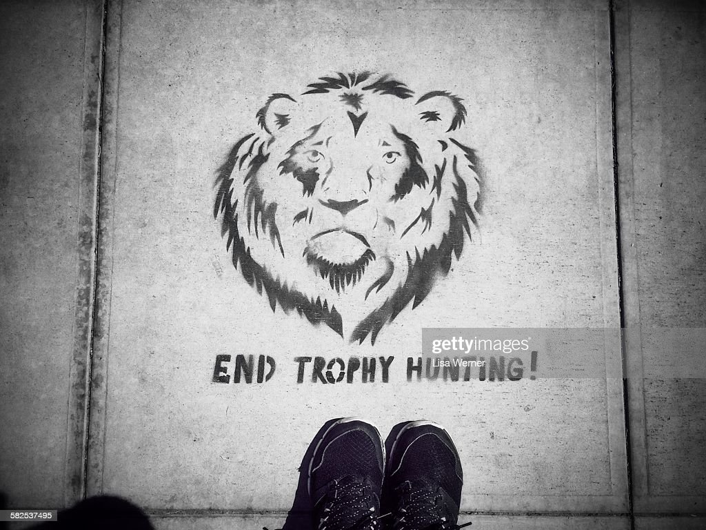 September 20, 2015 In reaction to the recent killing of Cecil the Lion in Zimbabwe, a stencil art protest sign appears on the sidewalk in Santa Barbara, California USA asking to end trophy hunting.