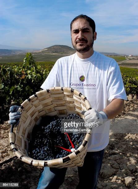 27 September 2005 Oyon La Rioja Grape harvest in Faustino's wine Cellars The spaniard actor Alfonso Lara during a grape harvest of the Faustino's...