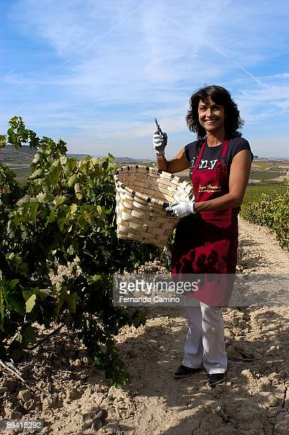 27 September 2005 Oyon La Rioja Grape harvest in Faustino's wine Cellars The spaniard actress Cristina Higueras during a grape harvest of the...