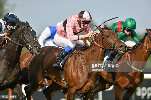 13 September 2014 Toe The Line with Fran Berry up on their way to winning the Irish Stallion Farms European Breeders Fund 'Petingo' Handicap...