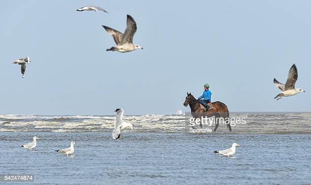 10 September 2015 Strait of Zanzibar with Jock Hunter up ride through the surf before the races begin Laytown Races Laytown Co Meath Picture credit...