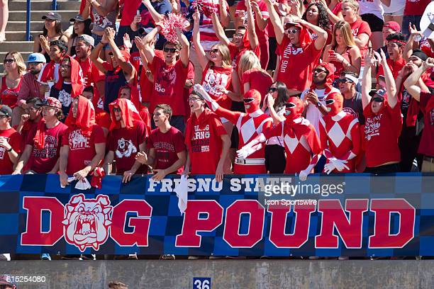 The Fresno State Student Dog Pound goes crazy after a touchdown during the game between the Fresno State Bulldogs and the Tulsa Golden Hurricane at...