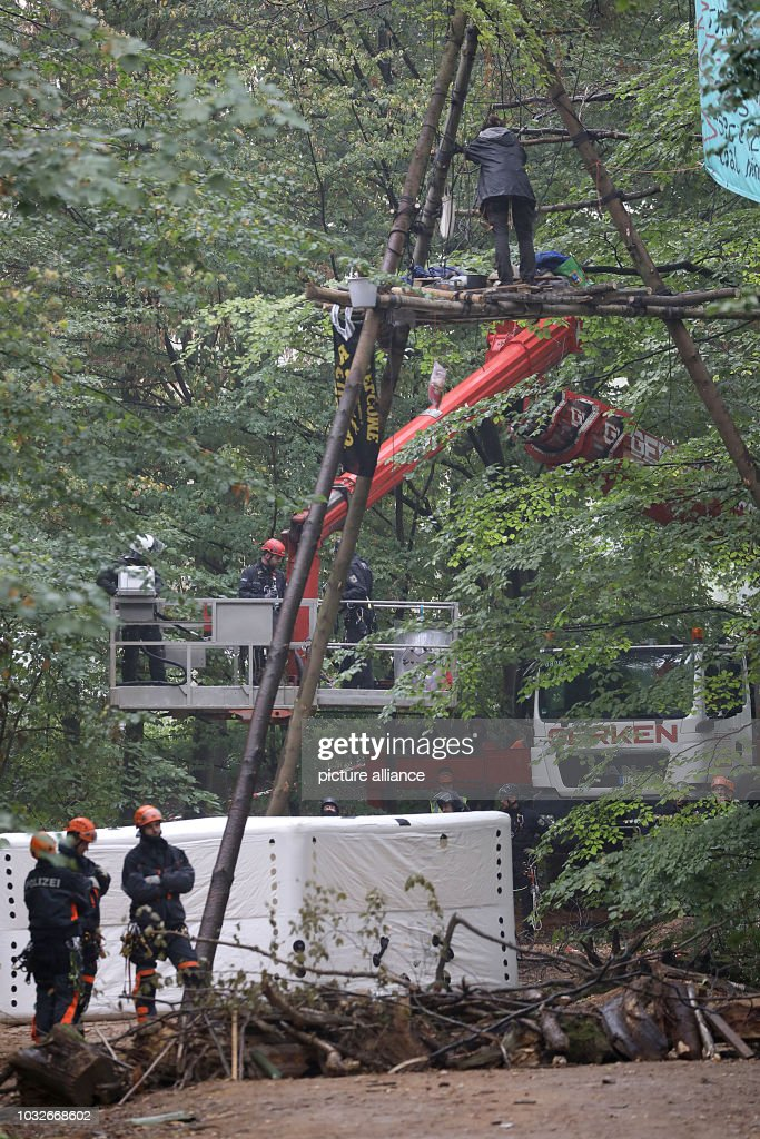 13 September 2018, North Rhine-Westphalia, Kerpen: Police are trying to get to an environmental activist in the tree with a forklift. The police secure the beginning of an evacuation of the Hambach Forest. Photo: Oliver Berg/dpa