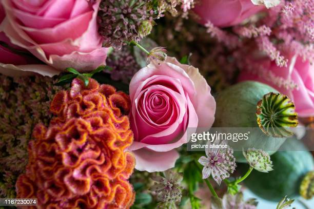 10 September 2019 SaxonyAnhalt Magdeburg A bouquet of cockscomb Astrantia Heidi roses and poppy seed capsules The bouquet had been tied during the...