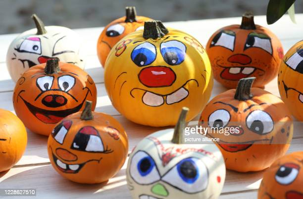 16 September 2020 MecklenburgWestern Pomerania Broderstorf Painted MiniHalloweens from our own harvest are lying on a table on the vegetable and...