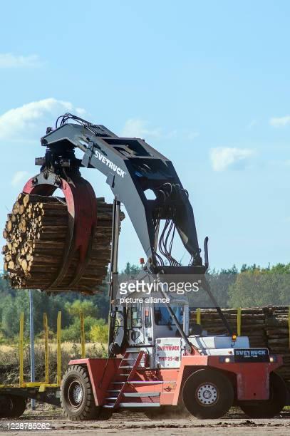 September 2020, Saxony-Anhalt, Arneburg: A log stacker unloads logs from a wagon at the Mercer Stendal site. In the morning, representatives of ten...