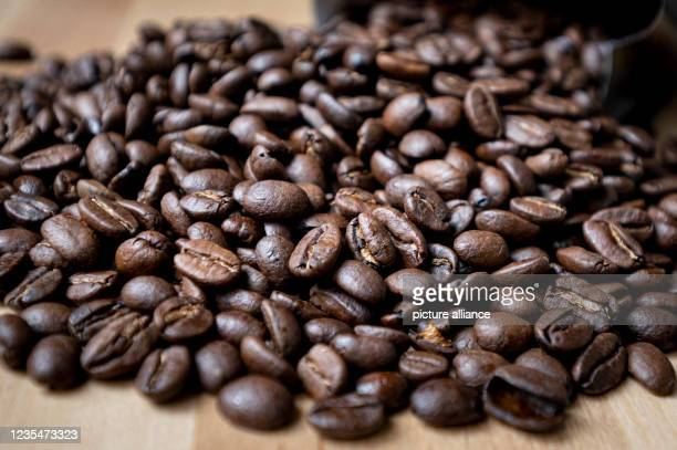 September 2021, Berlin: Roasted coffee beans lie on a table. Coffee is the Germans' favourite drink - per capita consumption in 2020 averaged 168...