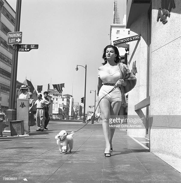 September 8 California Hollywood Hollywood and Vine Joan Bradshaw