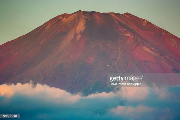 September Red Fuji