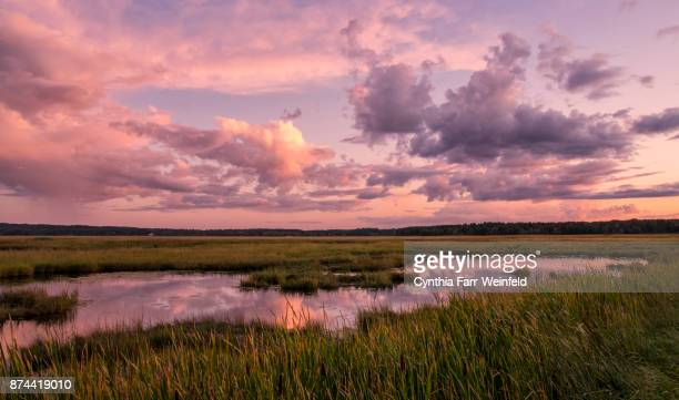 september sunset at scarborough marsh 2 - salt_marsh stock pictures, royalty-free photos & images