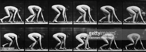 A sequence of 12 photographs illustrating the motion of a woman crawling on all fours circa 1880
