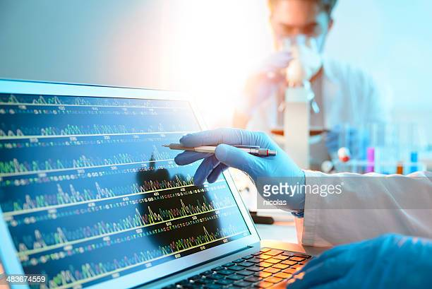 dna sequence - science and technology stock pictures, royalty-free photos & images