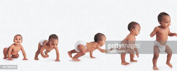 sequence showing a baby in a nappy learning to walk - 赤ちゃんのみ ストックフォトと画像