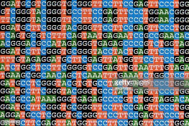 DNA-Sequenzen unaligned auf dem LCD-Bildschirm