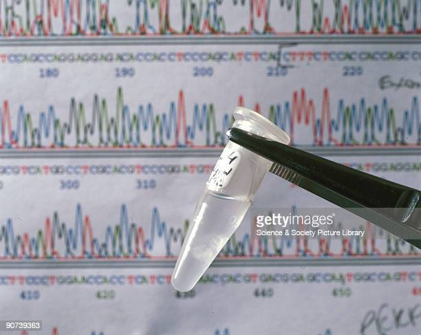 A sequencing chromatograph showing a DNA sequence and a sample of DNA from the human genome mapping project carried out by the Medical Research...