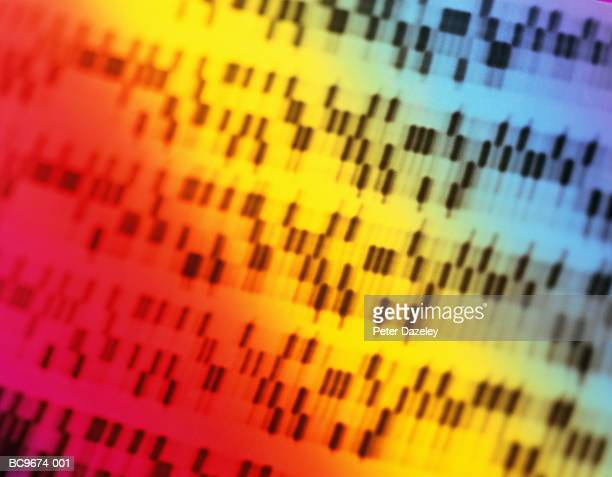 dna sequencing gel, full frame (brightly lit, blurred motion) - gel effect lighting stock photos and pictures