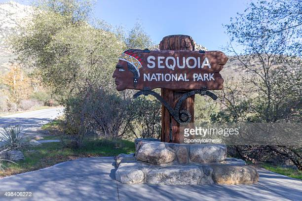 Sequoia - Kings Canyon National Park