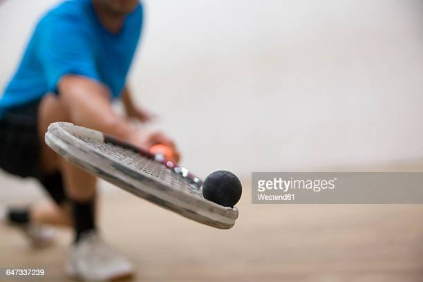 serbia, squash, man playing squash - squash sport stock pictures, royalty-free photos & images