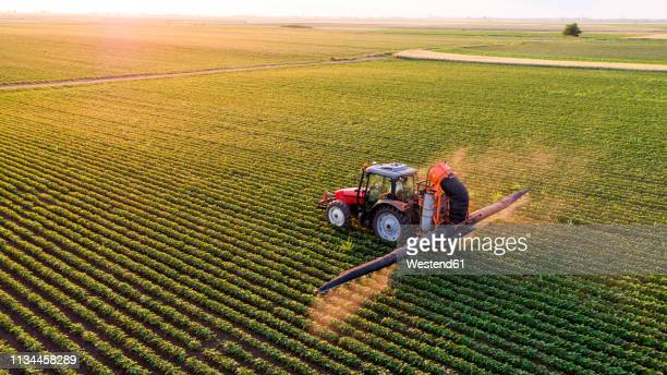 serbia, vojvodina, aerial view of a tractor spraying soybean crops - agriculture stock pictures, royalty-free photos & images
