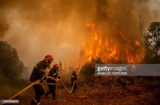Serbian firefighters use a water hose to extinguish the burning blaze of a forest fire in the village of Glatsona on Evia island, on August 9, 2021....
