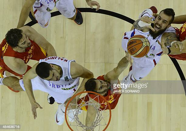 Serbia's centre Miroslav Raduljica and Serbia's forward Nikola Kalinic vie with Spain's forward Pau Gasol and Spain's forward Rudy Fernandez during...