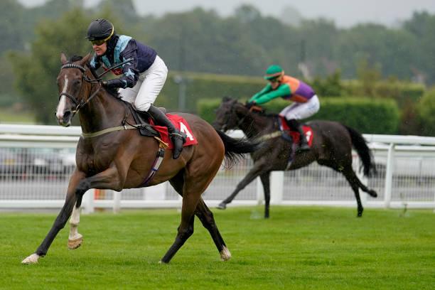 GBR: Sandown Races