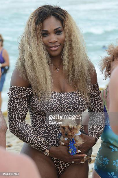 Serena Williams is seen on the sand at the Soho Beach Hotel on May 31 2014 in Miami Florida