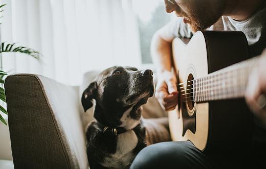 Serenading - gettyimageskorea