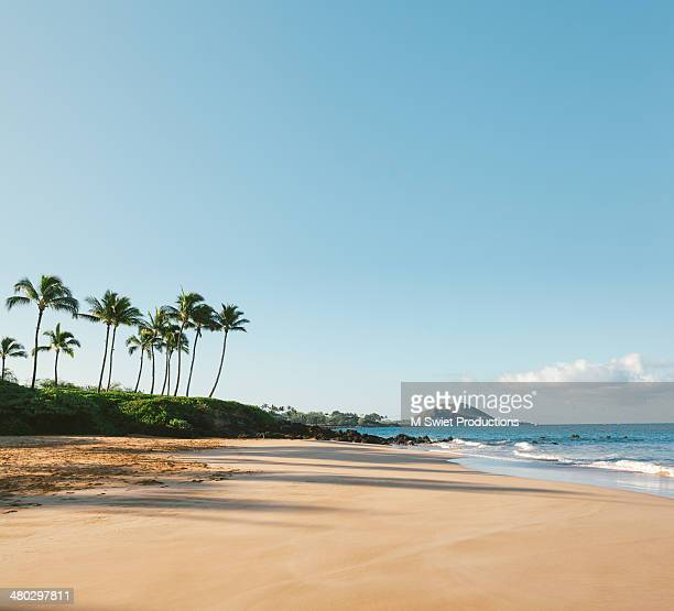 serene beach - hawaii islands stock pictures, royalty-free photos & images