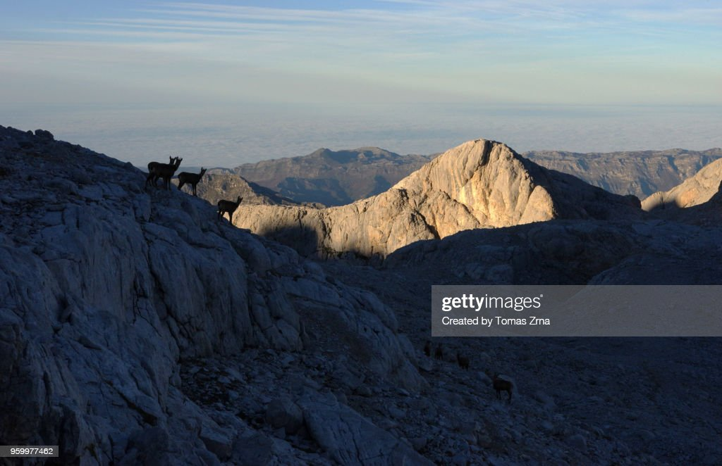 Serene evening in Picos de Europa : Stock-Foto