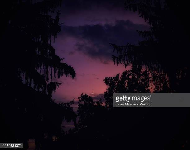 serene summertime crescent - pink moon stock pictures, royalty-free photos & images