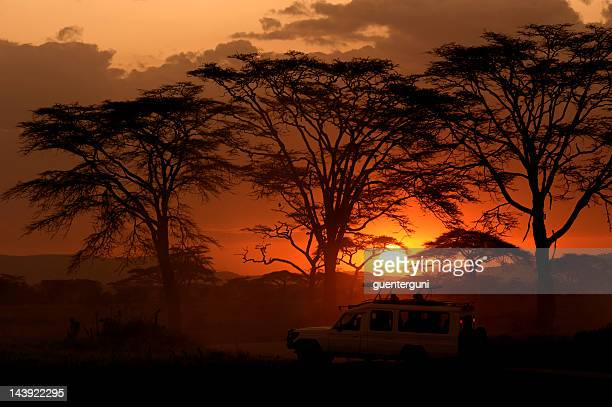 Serengeti, Africa sunset behind trees and a safari vehicle