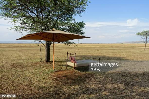 Serengeti National Park Singita Sabora Tented Camp Tanzania