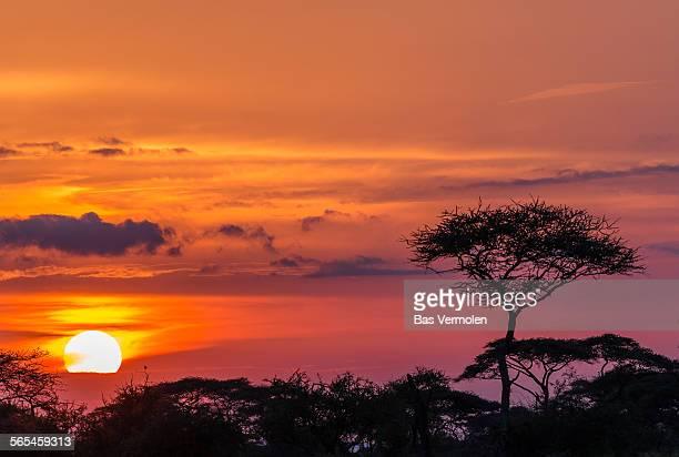 Serengheti sunset in Tanzania